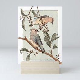 Cedar Waxwings Mini Art Print