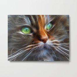 Persian Kitty Metal Print
