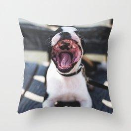 Boston Terrier or Sea Lion? Throw Pillow