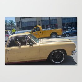 Dog in a car Canvas Print