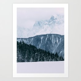 Frozen forest Art Print