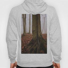 Foggy Woods VI Hoody