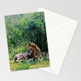Pride of the Pack Stationery Cards
