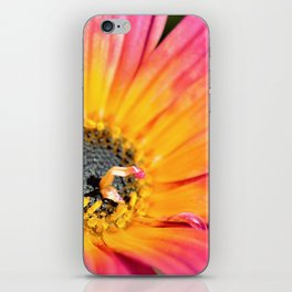 Beautiful Pink Imperfection Flower  by Reay of Light Photography iPhone Skin