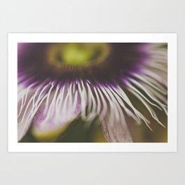 passion ii Art Print