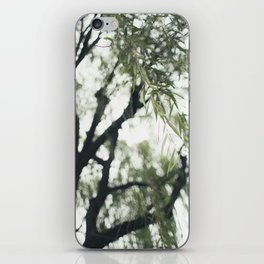 Beneath the Willow Tree iPhone Skin
