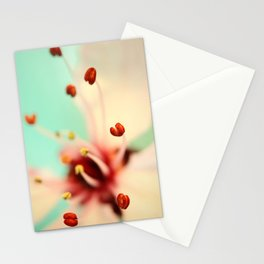 Feeling Spring Stationery Cards