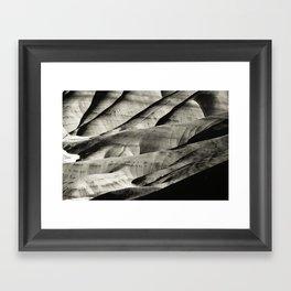 Painted Hills Monotone Framed Art Print