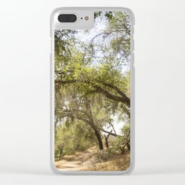 Follow The Tree Lined Trail Clear iPhone Case