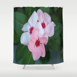 Blooming Beautiful Pink Impatiens Flowers Shower Curtain
