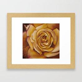 Light Flower Framed Art Print