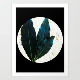 With the moon behind Art Print