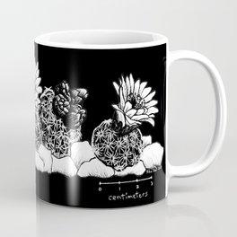 Pediocactus bradyi, lineup (black background) Coffee Mug