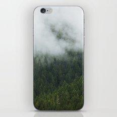 Tree Fog iPhone & iPod Skin