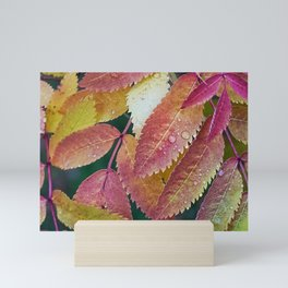 Autumn leaves Mini Art Print
