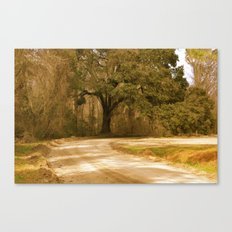 Old Dirt Road Canvas Print