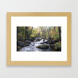 Upriver Framed Art Print