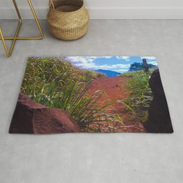 Red Dirt Path Rug