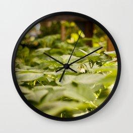 Potato Plants Photography PrintPotato Plants Photography Print Wall Clock