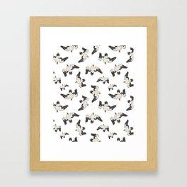 Birds Pattern Photo Collage Framed Art Print