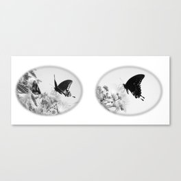 Wings of Inspiration Canvas Print