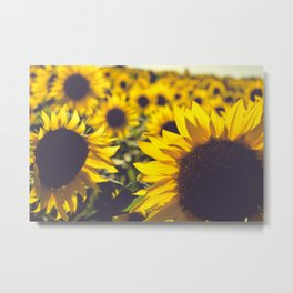 Summer Sunflower Love Metal Print