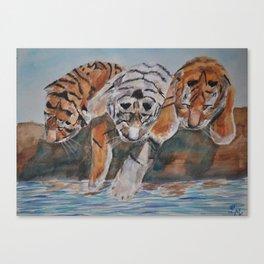 Triple Trouble Canvas Print