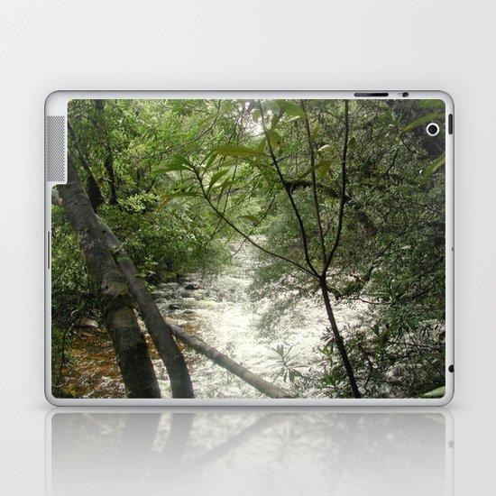 Gordon - Frankin Rivers Laptop & iPad Skin