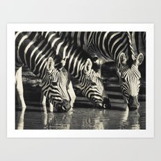 Water Hole Art Print