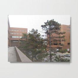 Campus Bricks Metal Print