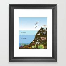 Southern California Tide Pool Explorer's Guide Framed Art Print