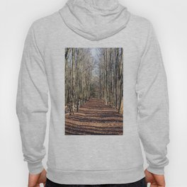 Follow me down... When the leaves come falling down... Hoody