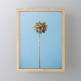 Palm Photography Framed Mini Art Print