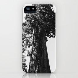 Sequoia National Park VI iPhone Case