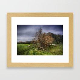 Sheep At Postling Framed Art Print