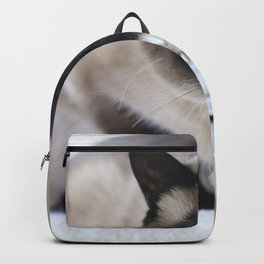 Innocent Expression Backpack