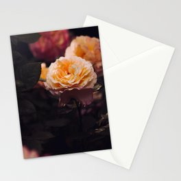 Bouquet Of Sunset Yellow orange Purple Flowers Stationery Cards