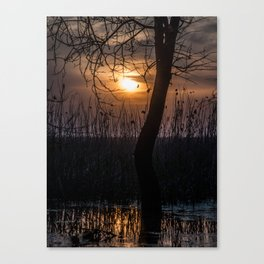 Sunset with mood Canvas Print