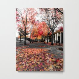 Colorful Autumn In Seattle. Metal Print