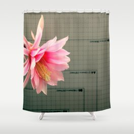 A Chart Topper Shower Curtain