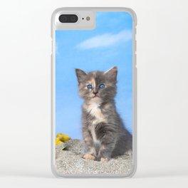 Kitten Fun in the Sun Beach Time Clear iPhone Case