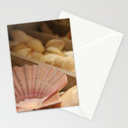 Conchiglie - Matteomike Stationery Cards