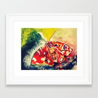 moth Framed Art Prints featuring Moth by Hilary Dow
