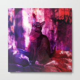 The Sunkissed Abyssinan Cat from Planet Kitarus Metal Print