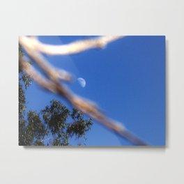 Moon on a Stick Metal Print