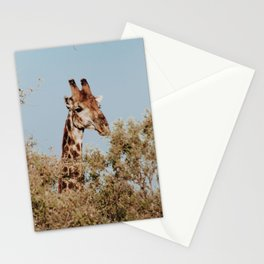 Giraffe Stationery Cards