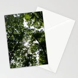 Forest Canopy Art Decor. Stationery Cards