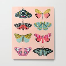 Lepidoptery No. 1 by Andrea Lauren  Metal Print