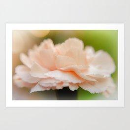 """Pretty in Peach"" Art Print"