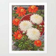 Vintage flower Chrysanthemum Art Print